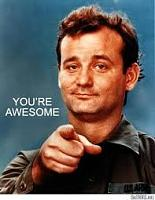 bill murray You are Awesome.jpg