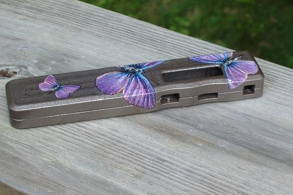 butterfly darwin 013.jpg