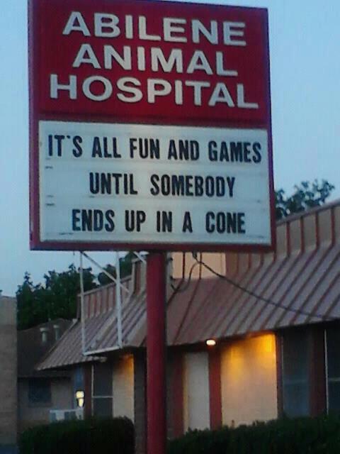 Cone - funny.jpg