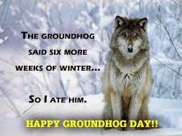 GroundhogAte.jpg