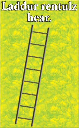 ladder-rentz.jpg