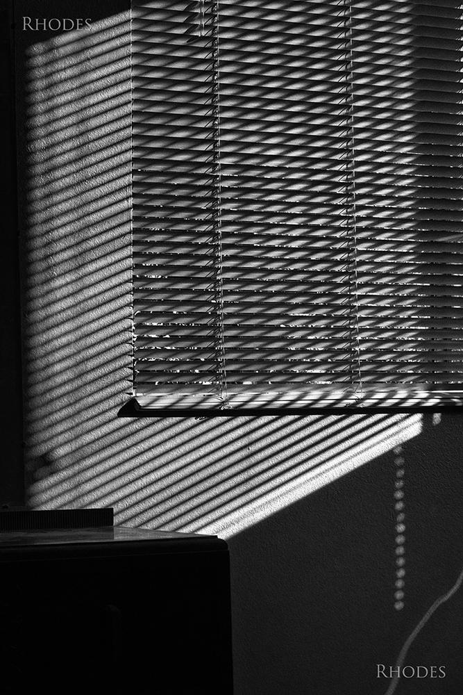 windows-blinds-0032-BW.jpg