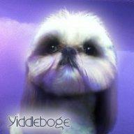 yiddleboge6