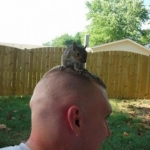 a squirrel on my head